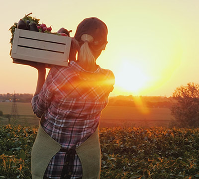 A farmer with a crate of produce looking at a sunrise